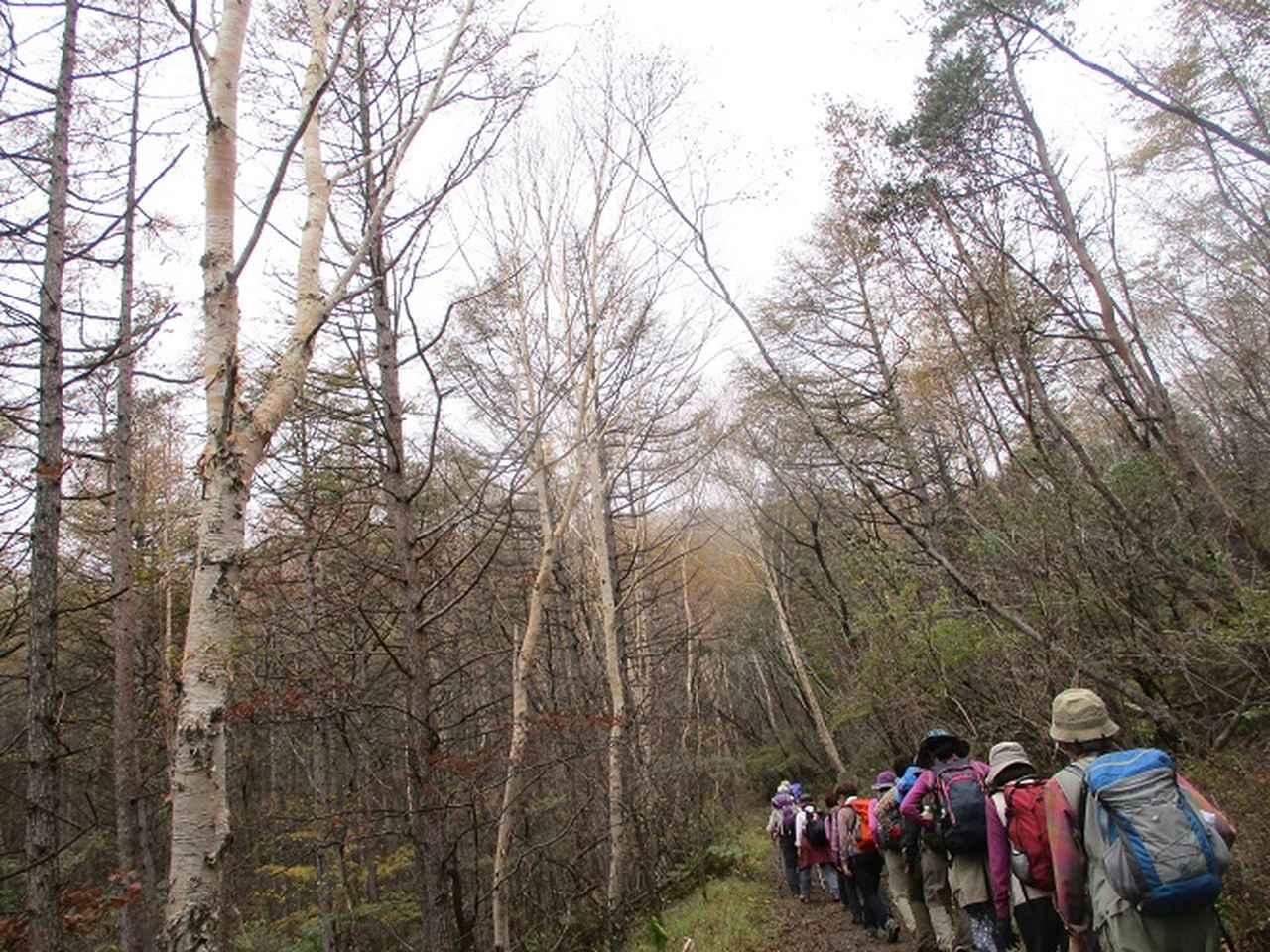 画像5: 先日10月21日に山旅会 小浅間山 に行ってきました♪
