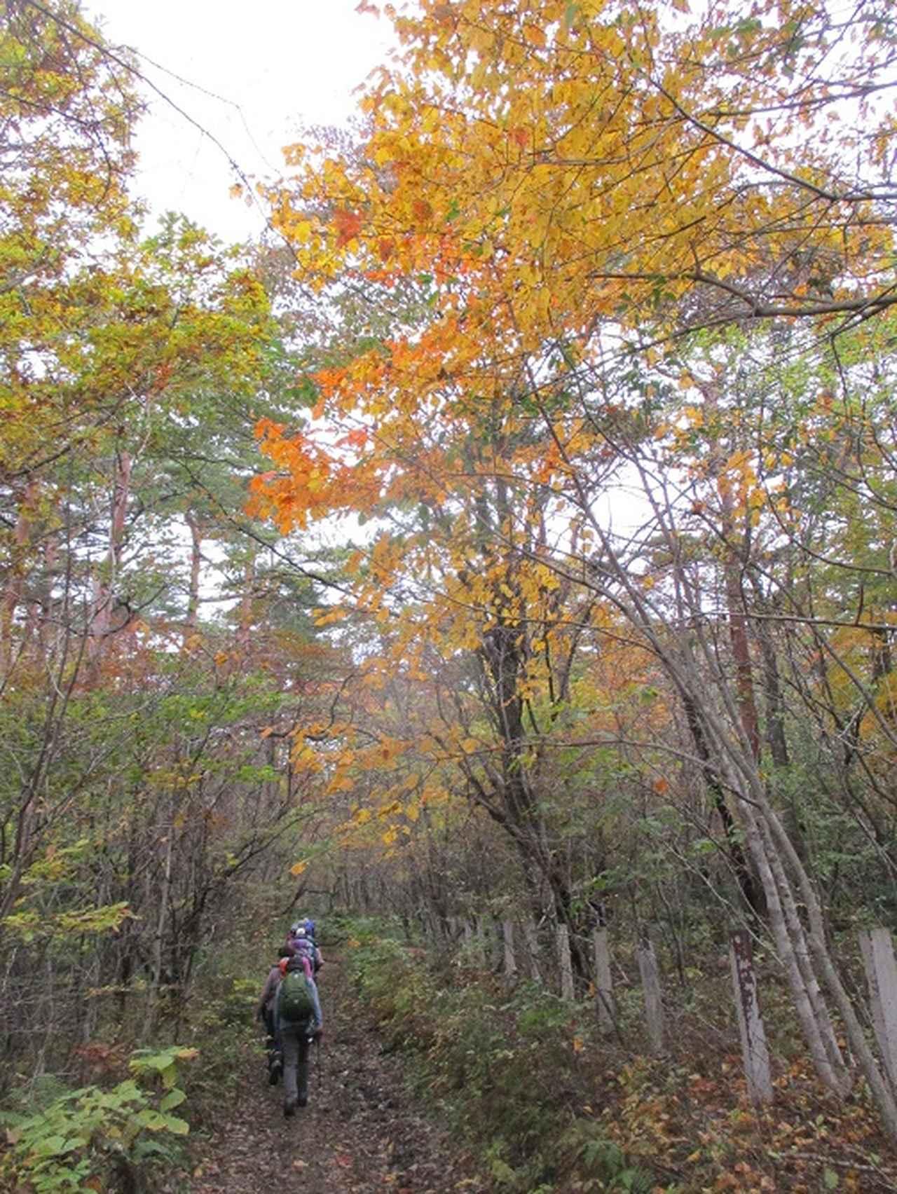 画像2: 先日10月21日に山旅会 小浅間山 に行ってきました♪