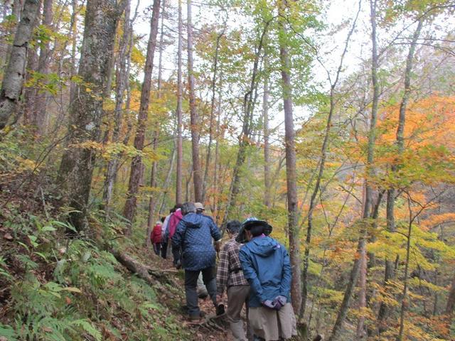 画像11: 先日10月21日に山旅会 小浅間山 に行ってきました♪