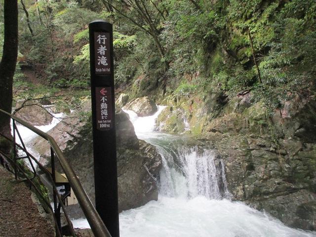 画像3: 10月22日から 大台ヶ原 ツアーに行ってきました!