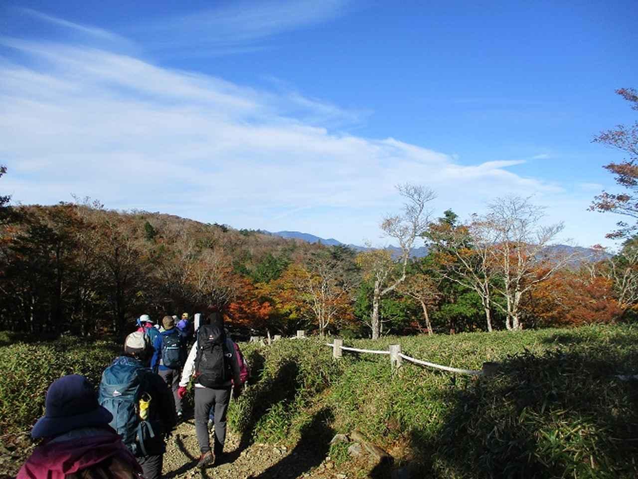 画像2: 先日10月23日より山旅会 大台ヶ原ツアー に行ってきました!