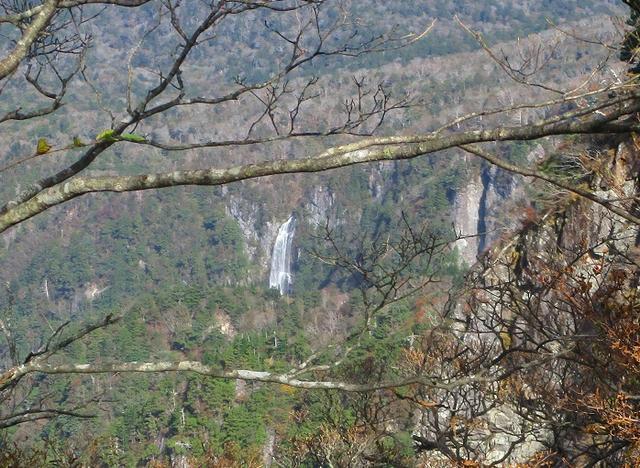 画像6: 先日10月23日より山旅会 大台ヶ原ツアー に行ってきました!
