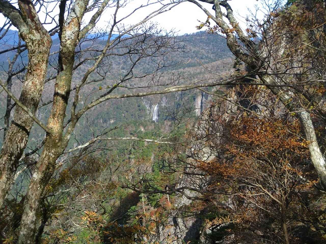 画像5: 先日10月23日より山旅会 大台ヶ原ツアー に行ってきました!