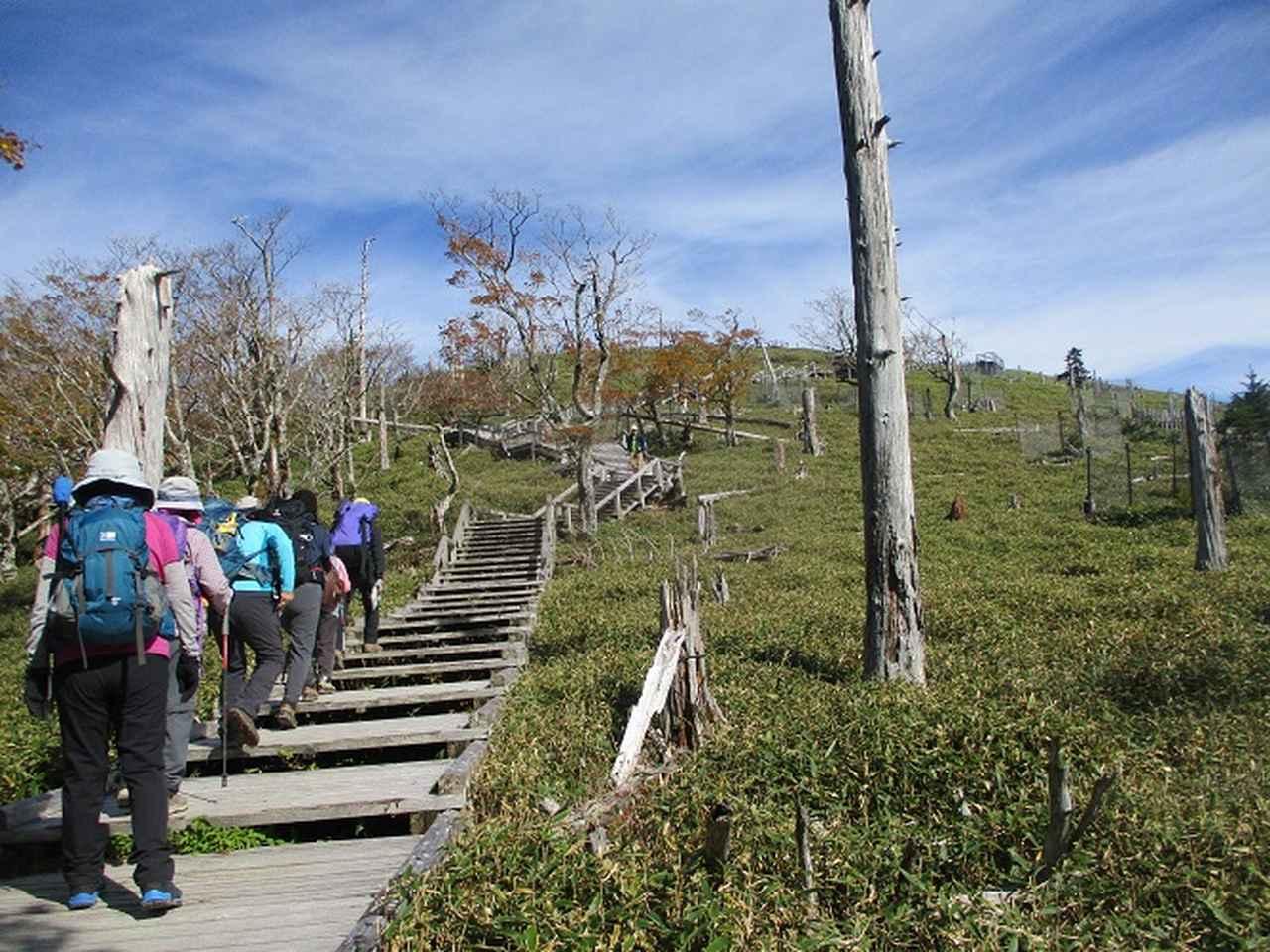 画像9: 先日10月23日より山旅会 大台ヶ原ツアー に行ってきました!
