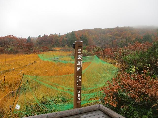 画像11: 10月24日に山旅会 「尼ヶ禿山」 ツアーに行ってきました!