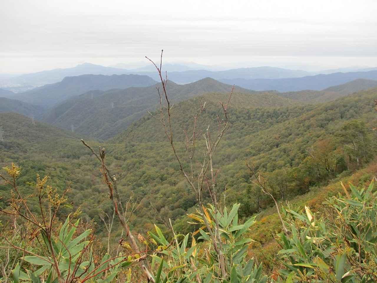 画像7: 10月24日に山旅会 「尼ヶ禿山」 ツアーに行ってきました!