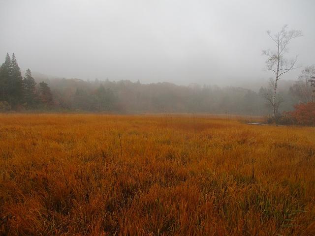画像10: 10月24日に山旅会 「尼ヶ禿山」 ツアーに行ってきました!