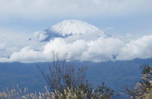 画像: 本日は山旅会ツアー12月までの催行状況のご案内です!