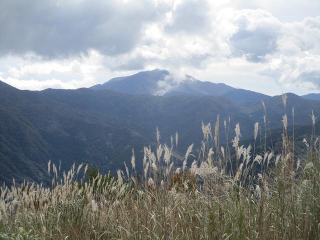 画像9: 10月26日に山旅会 「矢倉岳」 ツアーに行ってきました!