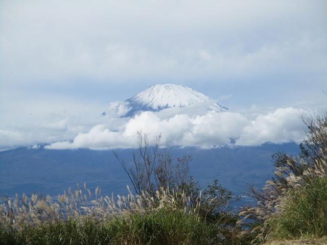 画像7: 10月26日に山旅会 「矢倉岳」 ツアーに行ってきました!