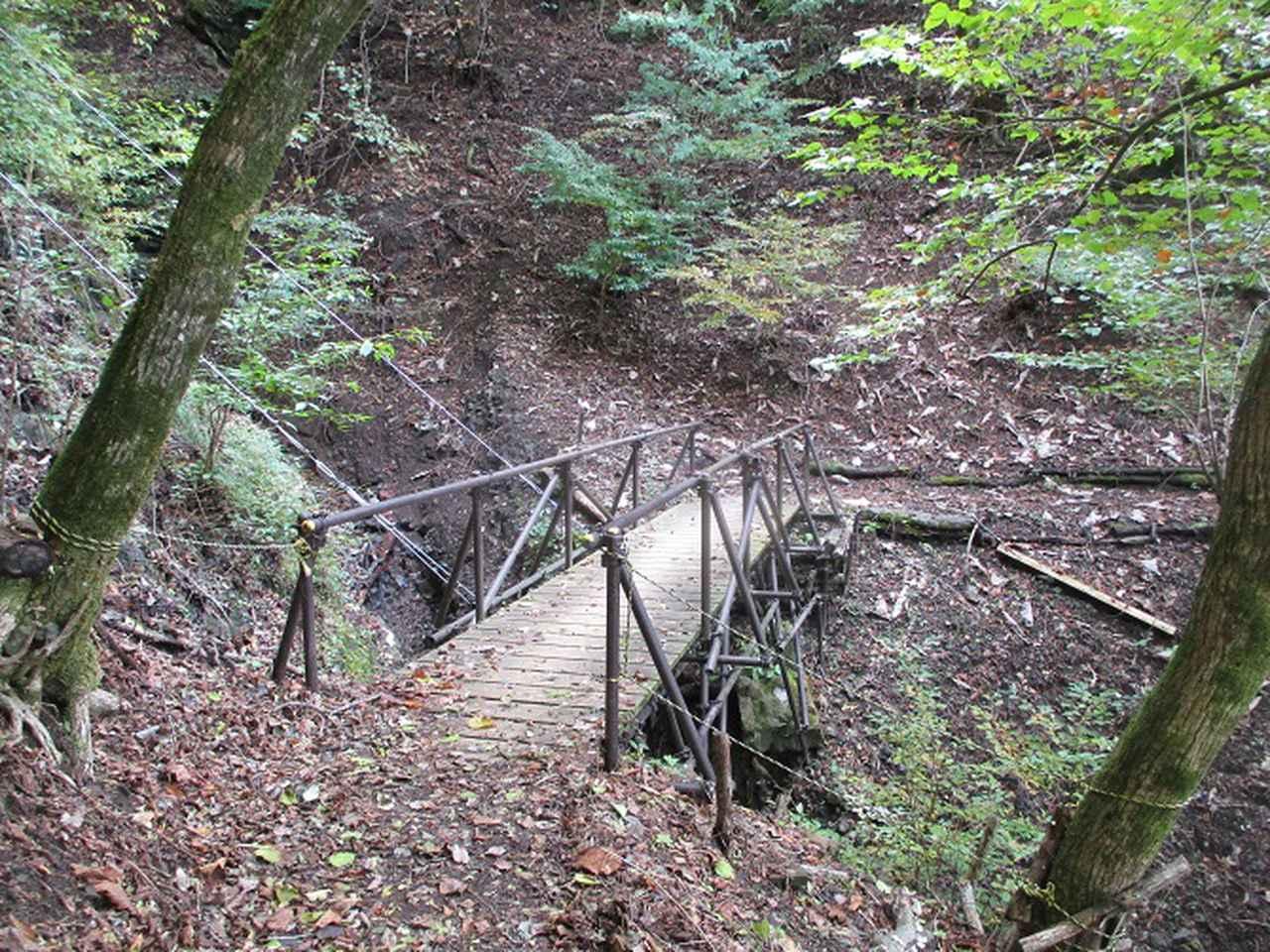 画像5: 11月の山旅会 蛾ヶ岳 の下見に行ってきました!