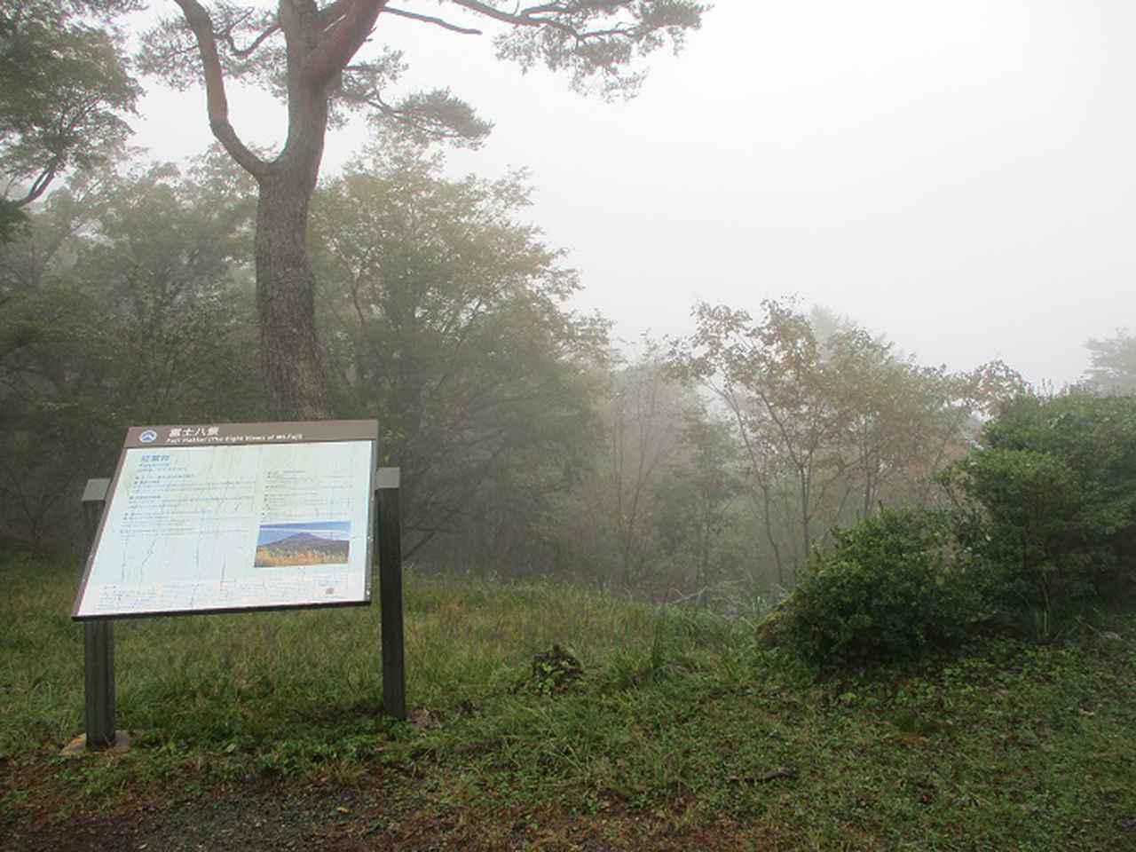 画像7: 11月の山旅会 青木ヶ原樹海と三湖台 ツアーの下見に行ってきました!