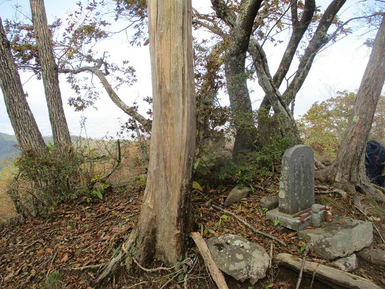画像8: 11月の山旅会 蛾ヶ岳 の下見に行ってきました!