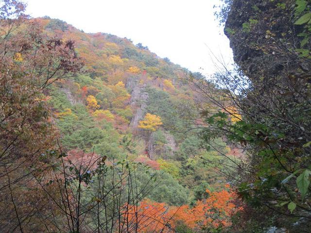 画像13: 11月1日に山旅会 「霊山」 ツアーに行ってきました!