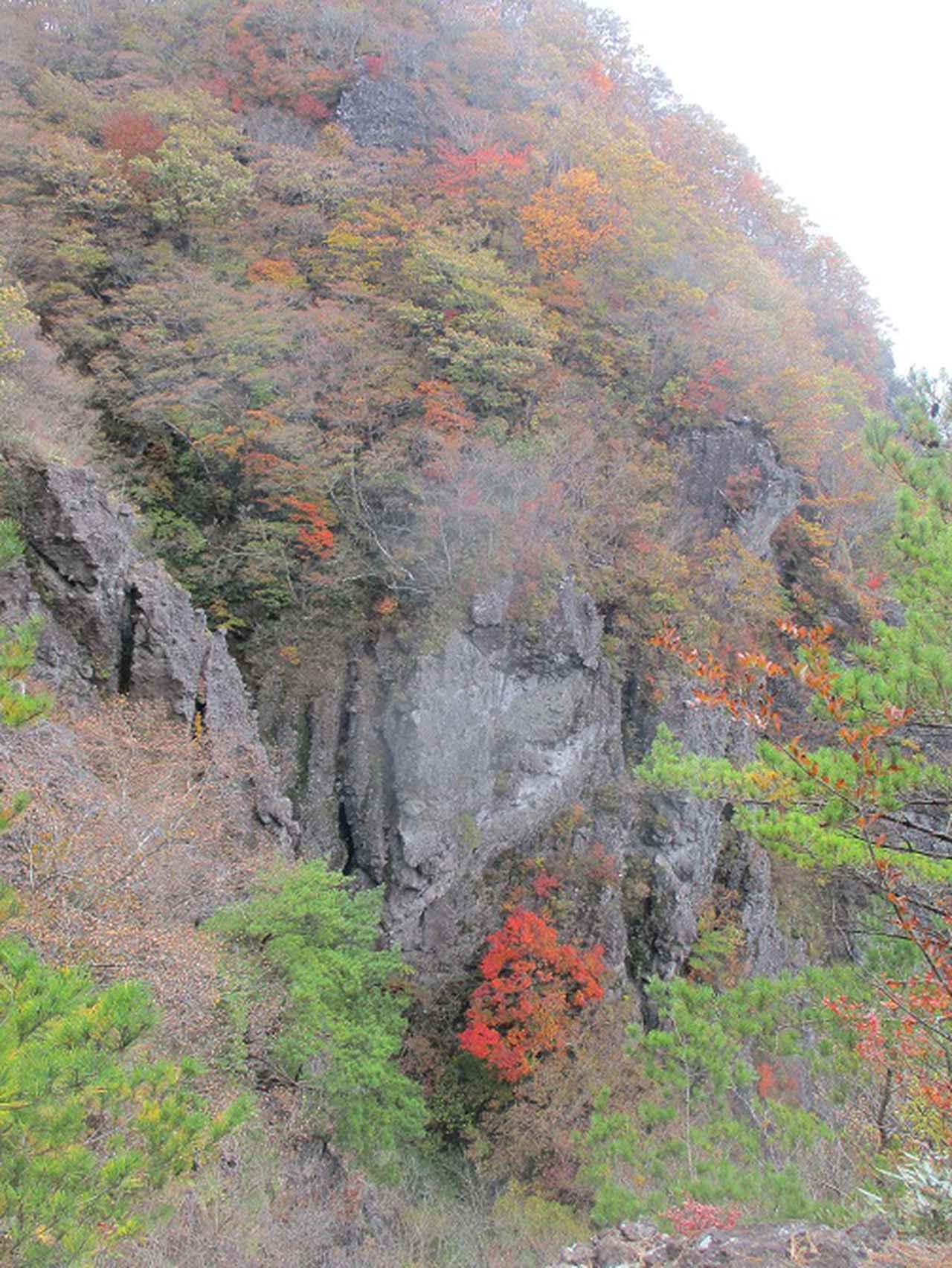 画像8: 11月1日に山旅会 「霊山」 ツアーに行ってきました!