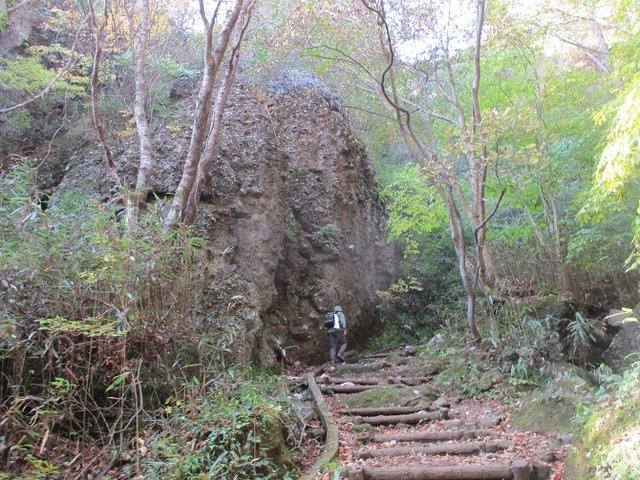 画像2: 11月1日に山旅会 「霊山」 ツアーに行ってきました!