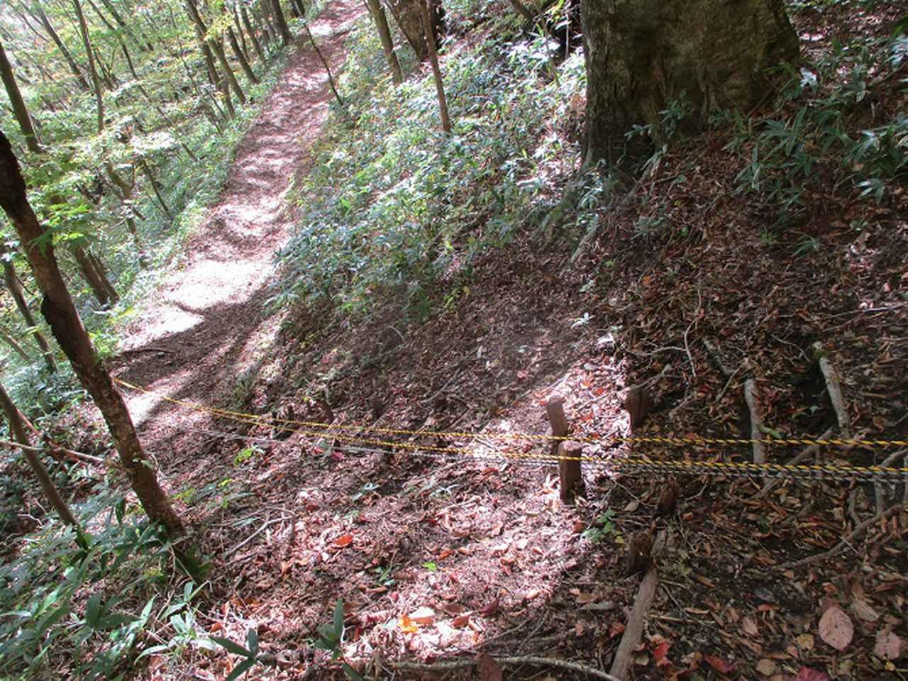 画像14: 11月の山旅会 八溝山 の下見に行ってきました!