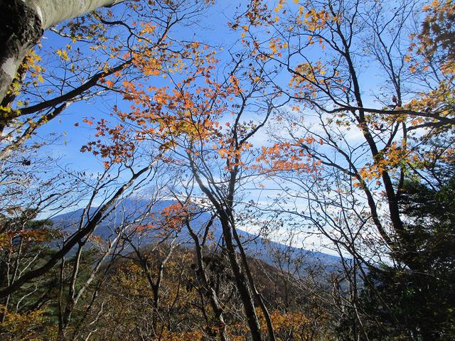 画像5: 11月7日に山旅会 烏帽子岳からパノラマ台 ツアーに行ってきました!