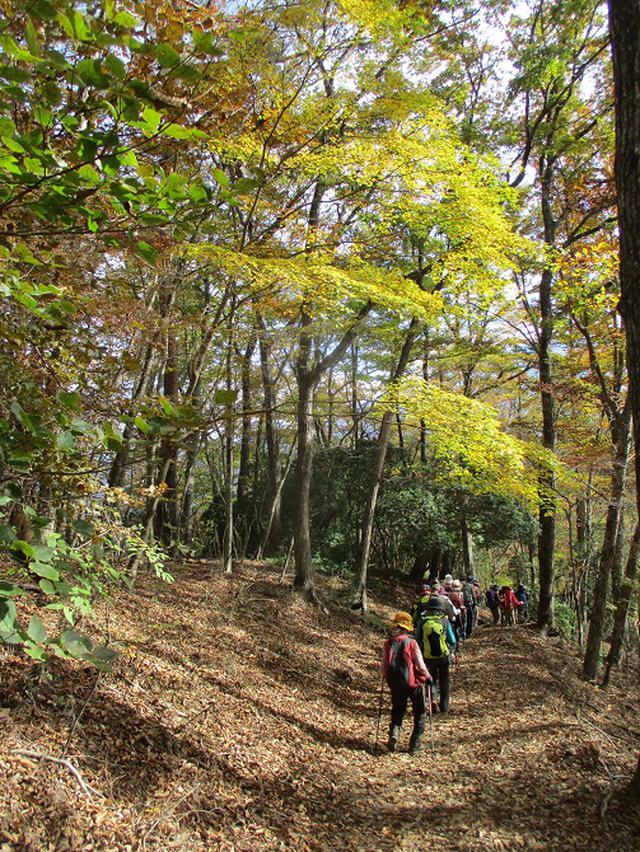 画像8: 11月7日に山旅会 烏帽子岳からパノラマ台 ツアーに行ってきました!