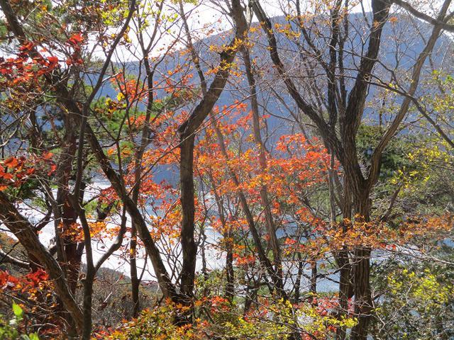 画像4: 11月7日に山旅会 烏帽子岳からパノラマ台 ツアーに行ってきました!