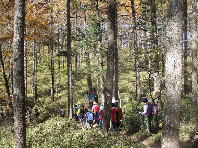 画像5: 11月6日に山旅会 「日向山」 ツアーに行ってきました!