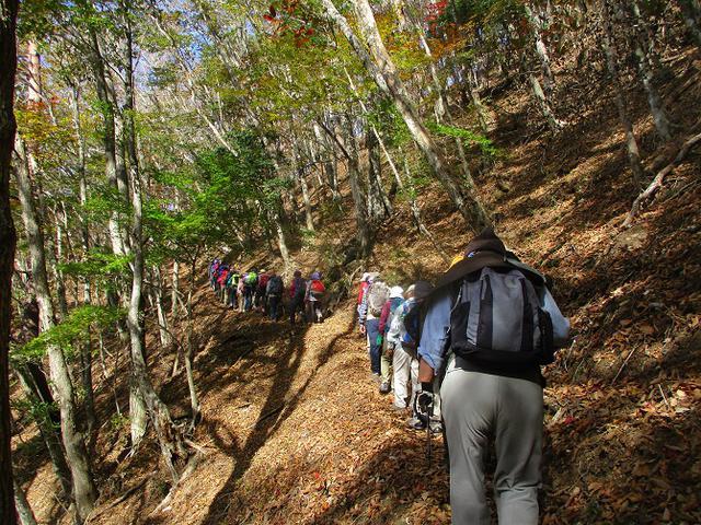 画像1: 11月7日に山旅会 烏帽子岳からパノラマ台 ツアーに行ってきました!