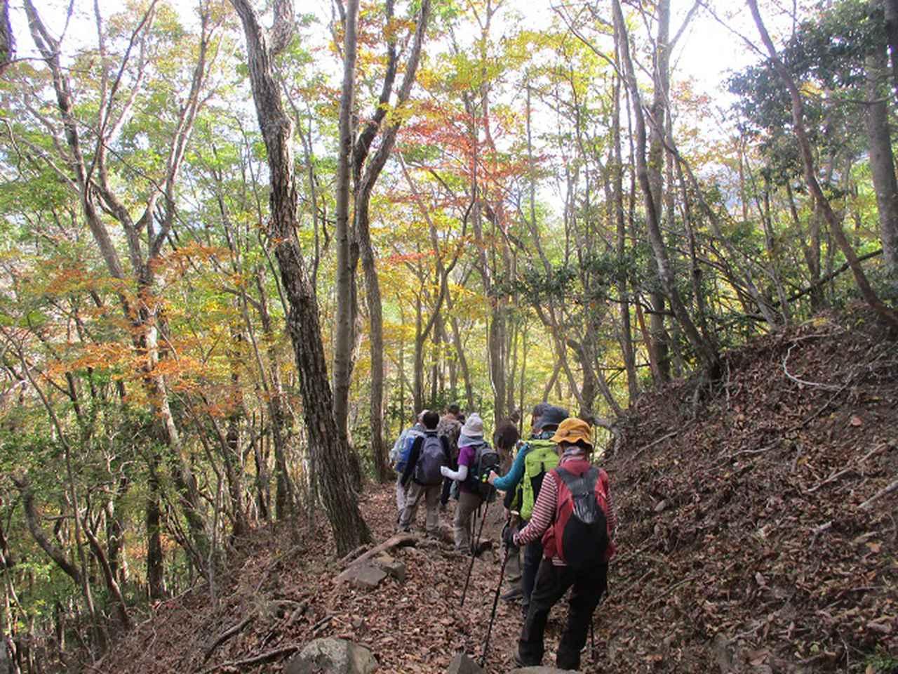 画像9: 11月7日に山旅会 烏帽子岳からパノラマ台 ツアーに行ってきました!