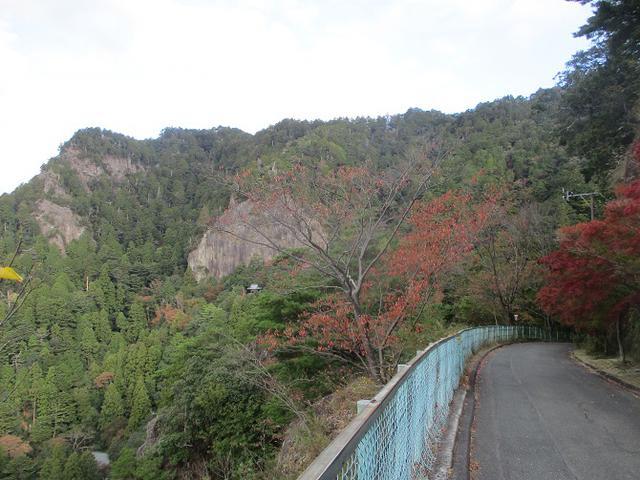 画像1: 11月の山旅会 「香嵐渓と鳳来寺山」 の下見に行ってきました!