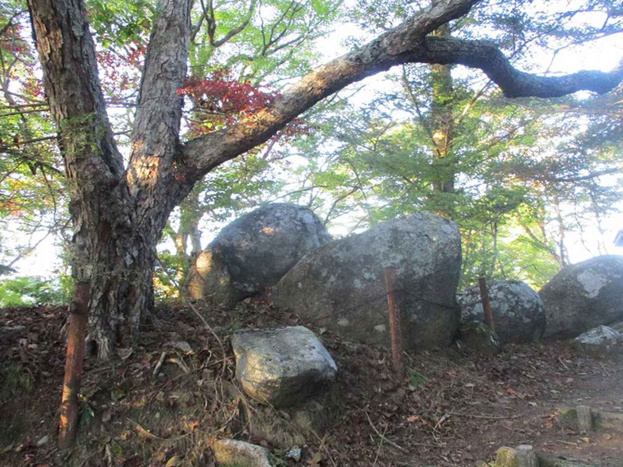 画像7: 11月の山旅会「香嵐渓と鳳来寺山」の下見に行ってきました!