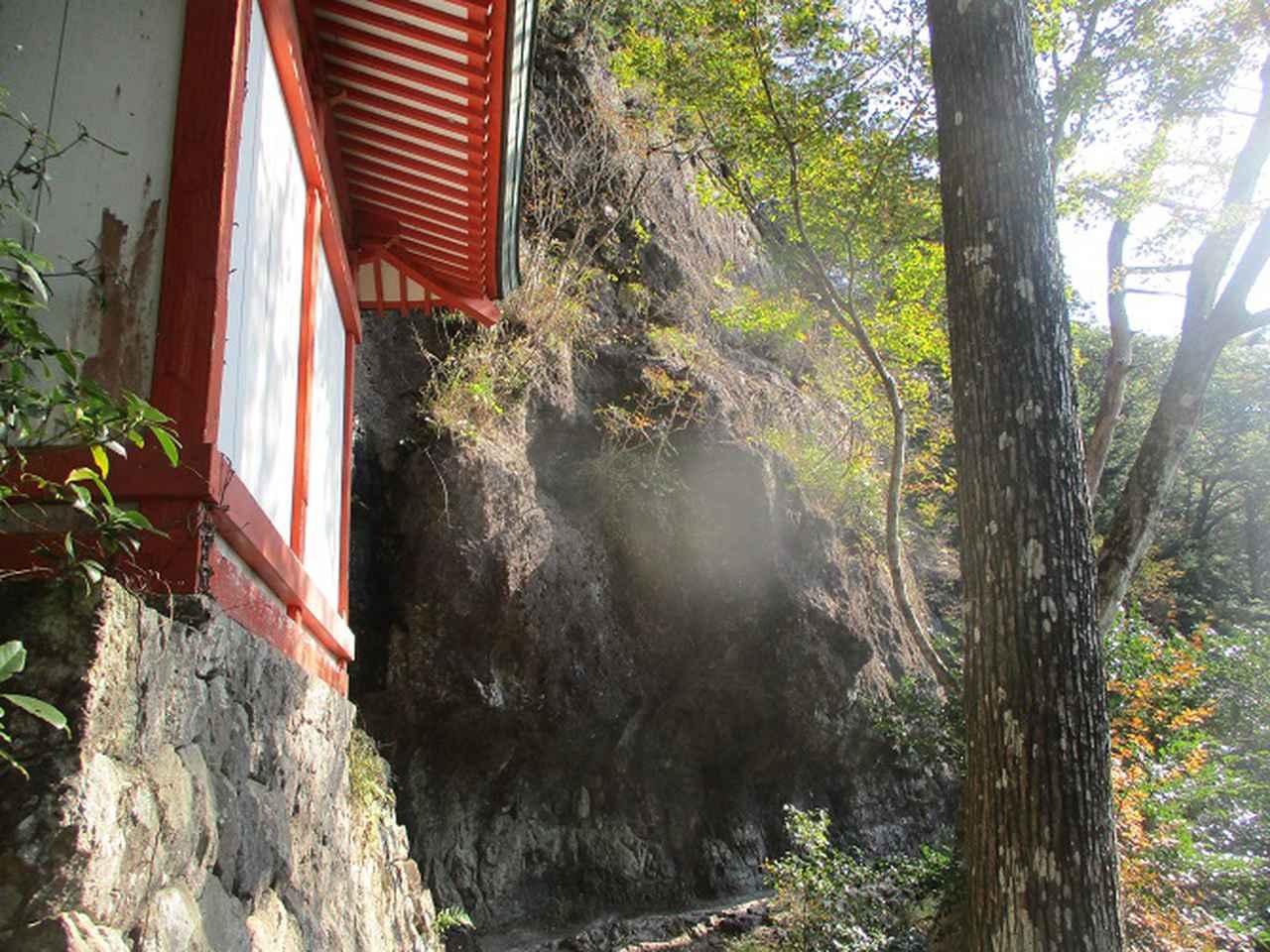 画像9: 11月の山旅会 「香嵐渓と鳳来寺山」 の下見に行ってきました!