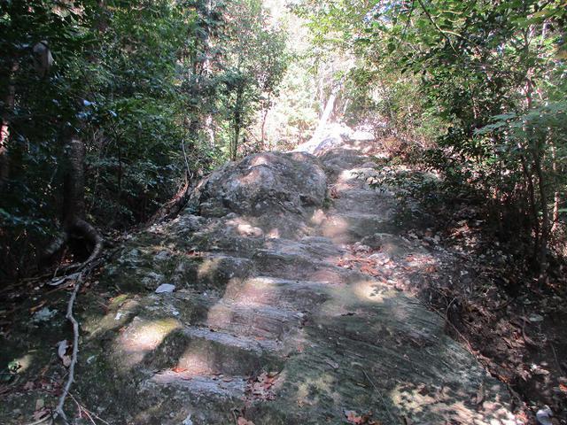 画像5: 11月の山旅会 「香嵐渓と鳳来寺山」 の下見に行ってきました!
