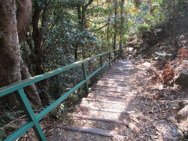 画像10: 11月の山旅会 「香嵐渓と鳳来寺山」 の下見に行ってきました!