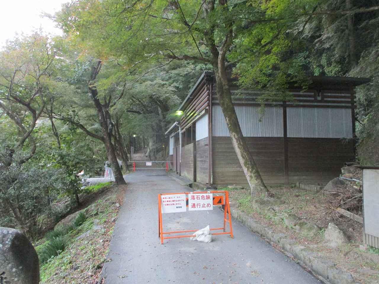 画像10: 11月の山旅会「香嵐渓と鳳来寺山」の下見に行ってきました!