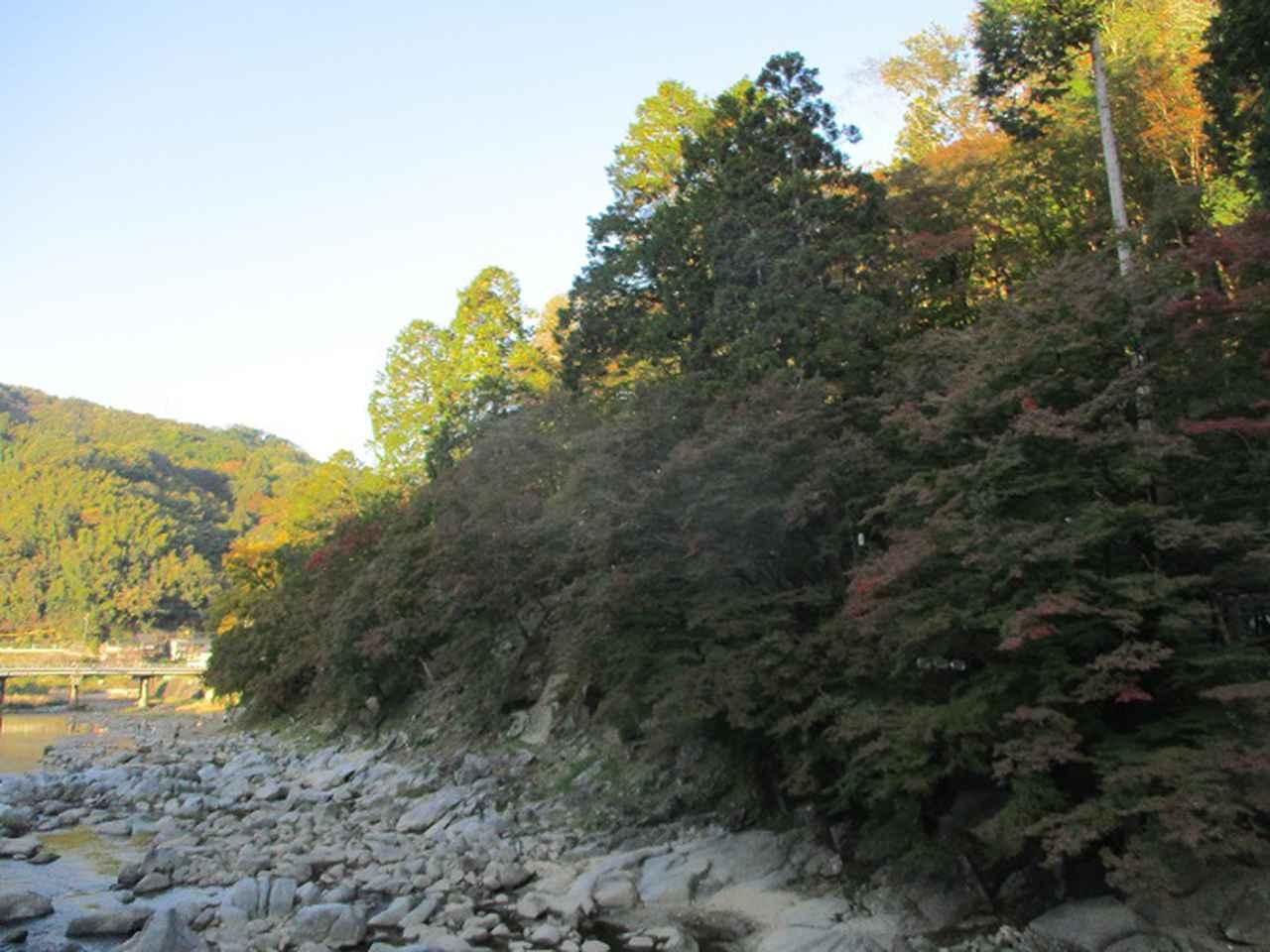 画像2: 11月の山旅会「香嵐渓と鳳来寺山」の下見に行ってきました!