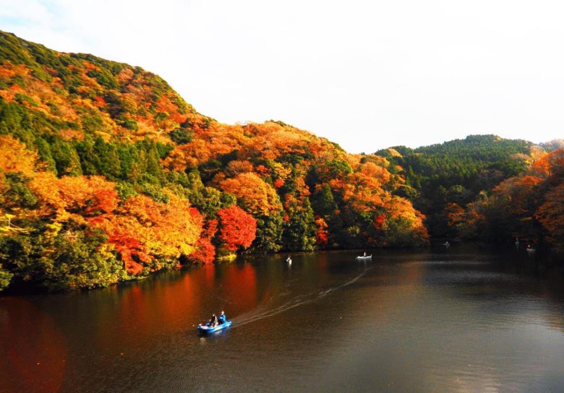 画像: <ハイク入門>『本州一遅い紅葉 房総の秘境 紅葉の折木沢と亀山湖』|クラブツーリズム