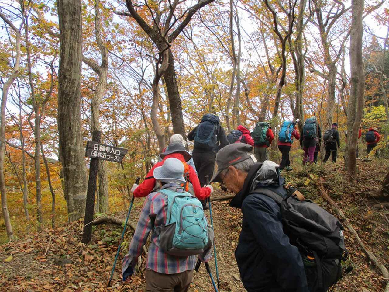 画像1: 11月14日に山旅会 八溝山 ツアーに行ってきました!