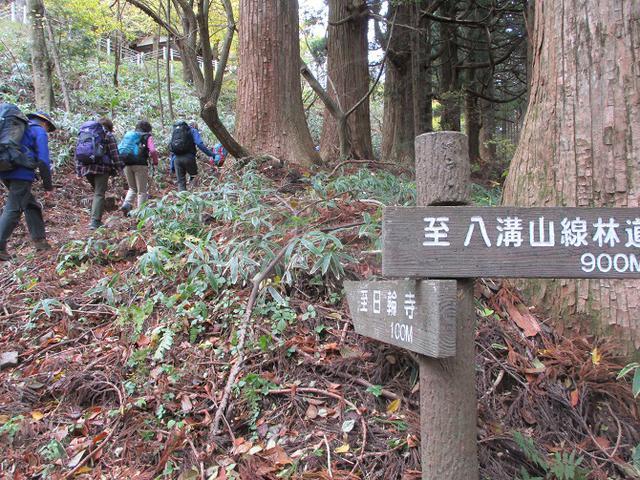 画像3: 11月14日に山旅会 八溝山 ツアーに行ってきました!