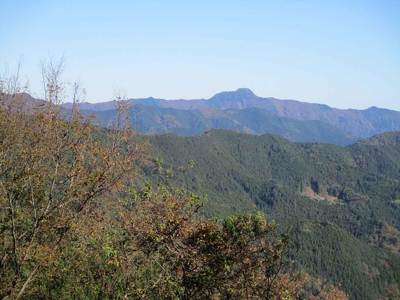 画像12: 11月の山旅会 都民の森から槙寄山 ツアーの下見に行ってきました!