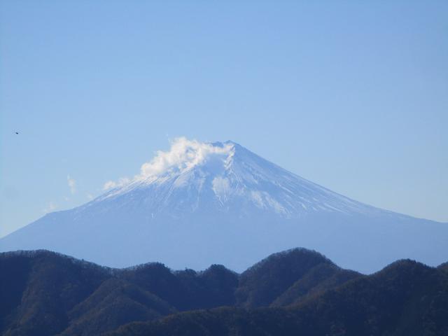 画像9: 11月の山旅会 都民の森から槙寄山 ツアーの下見に行ってきました!