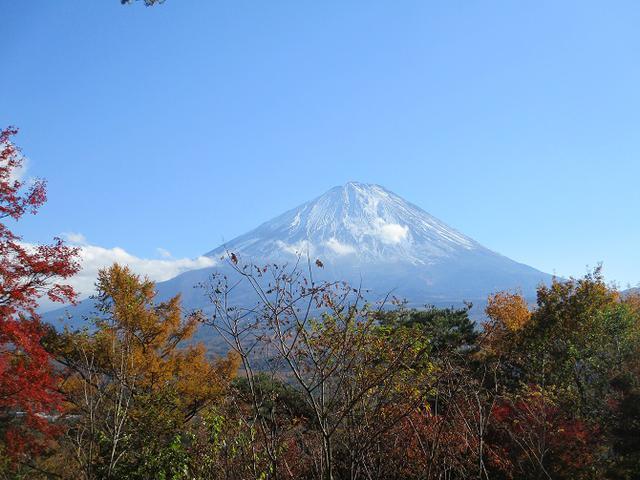 画像: 山旅会ツアー12月までの催行状況のご案内です!