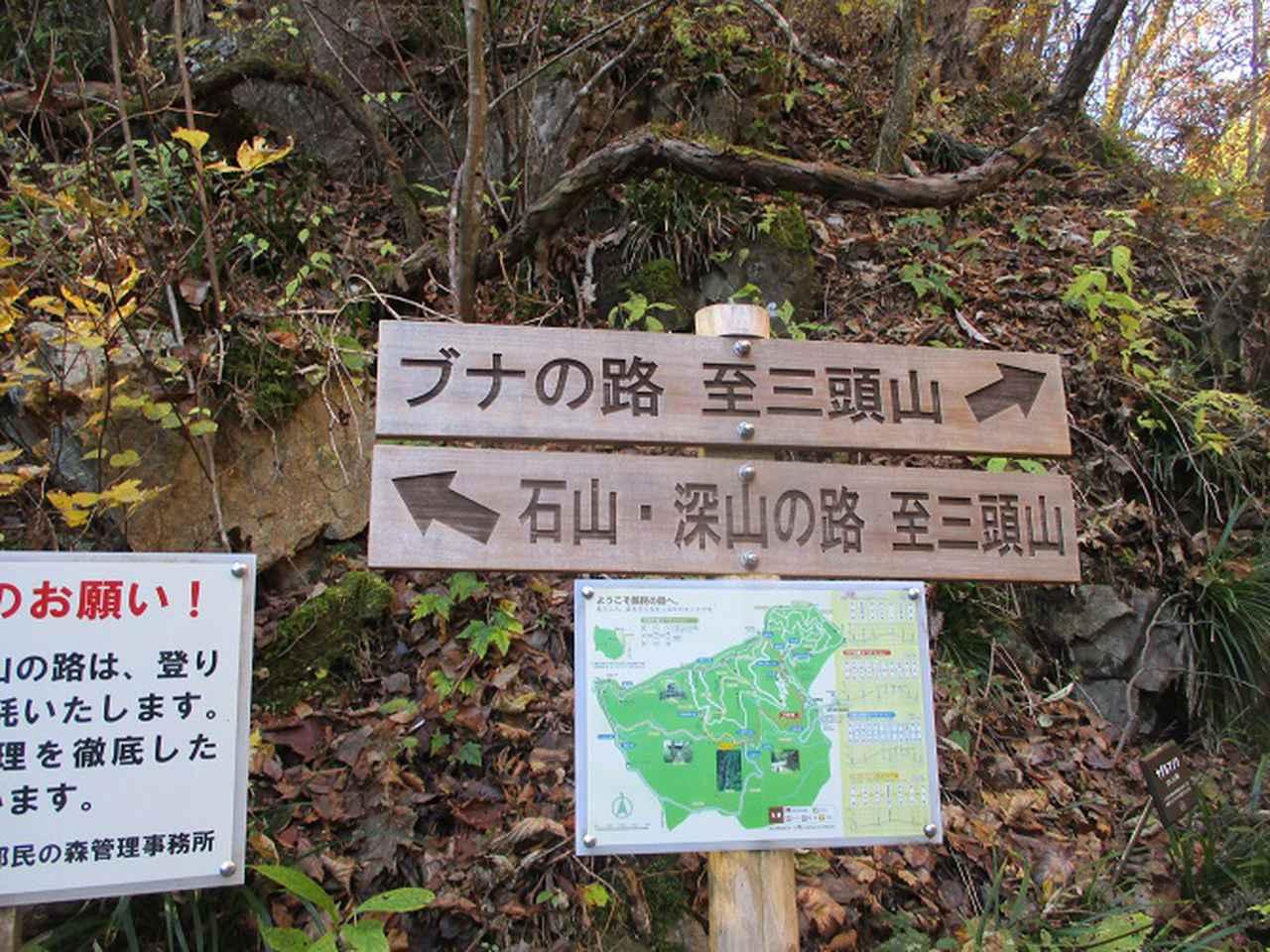 画像4: 11月の山旅会 都民の森から槙寄山 ツアーの下見に行ってきました!