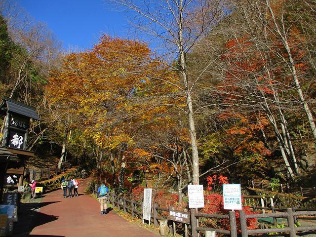 画像1: 11月の山旅会 都民の森から槙寄山 ツアーの下見に行ってきました!