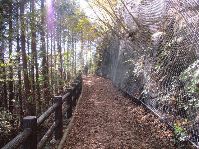 画像2: 11月の山旅会 都民の森から槙寄山 ツアーの下見に行ってきました!