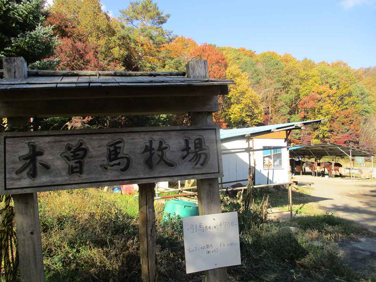 画像12: 岡田ガイドのハイキングコースで 青木ケ原樹海と三湖台 のコースに行ってきました♪