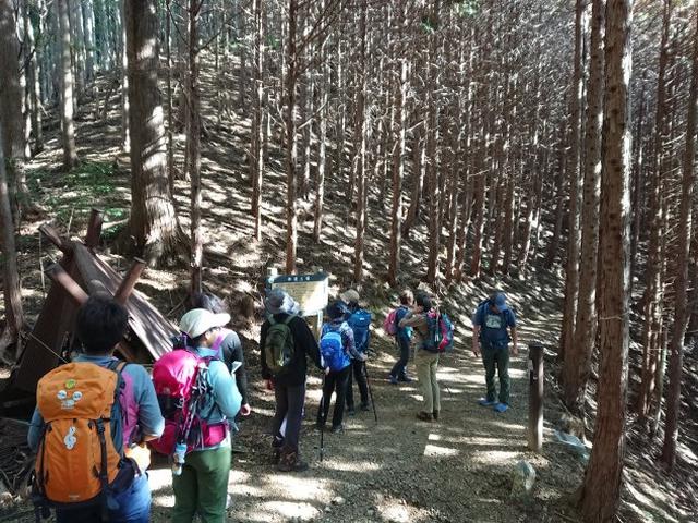 画像4: ごちそう山!!子の権現から竹寺ツアーのご報告です!