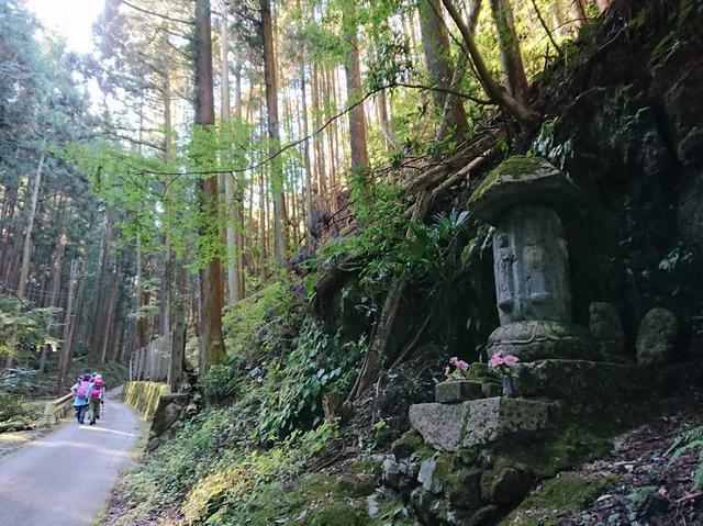 画像1: ごちそう山!!子の権現から竹寺ツアーのご報告です!