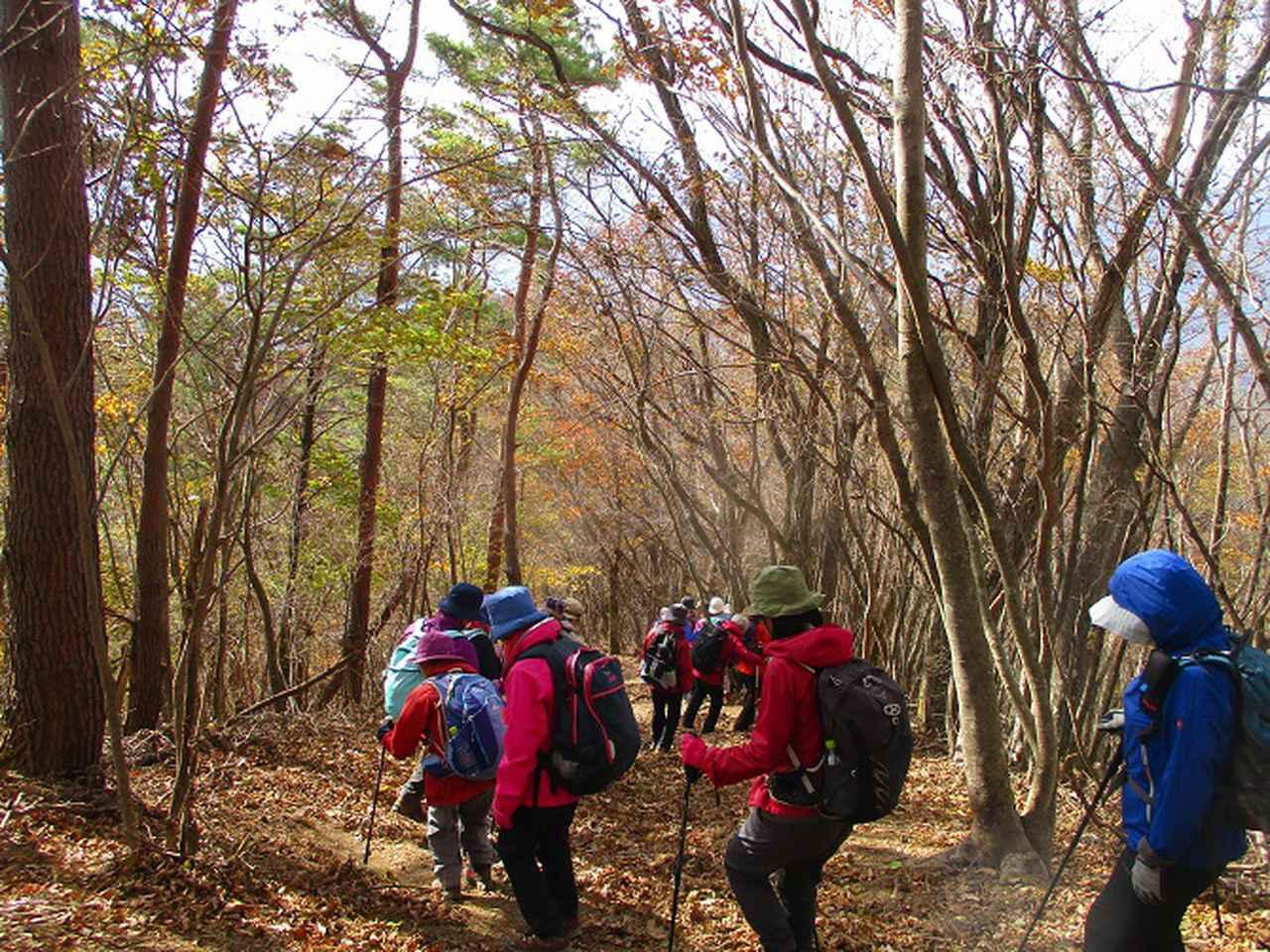 画像8: 11月18日に山旅会 四尾連湖から蛾ヶ岳 ツアーに行ってきました!