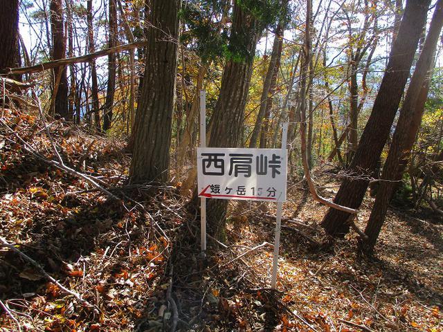 画像5: 11月18日に山旅会 四尾連湖から蛾ヶ岳 ツアーに行ってきました!