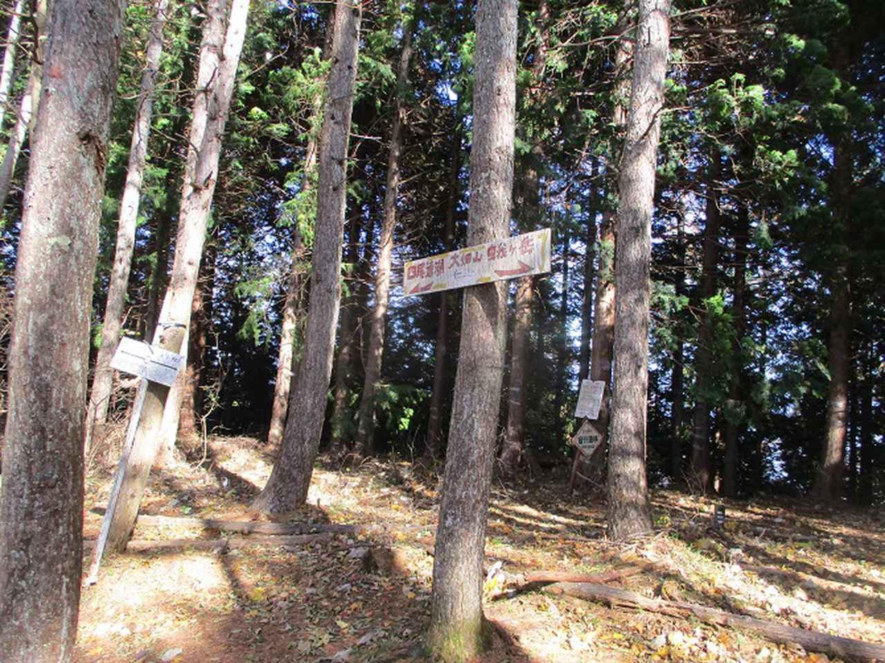 画像2: 11月18日に山旅会 四尾連湖から蛾ヶ岳 ツアーに行ってきました!