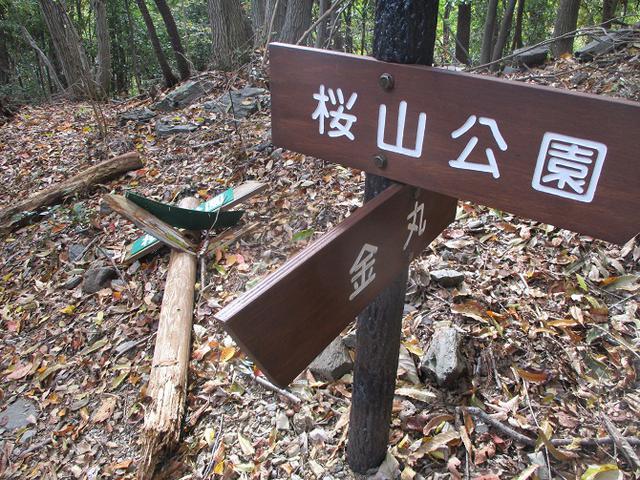 画像11: 12月の山旅会 「鬼石桜山」 ツアーの下見にいってきました!